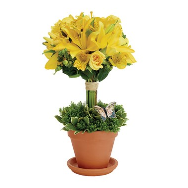 Topiary Greetings flower bouquet (BF181-11KM)